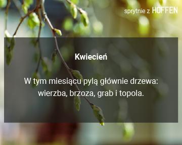 Wiosna5
