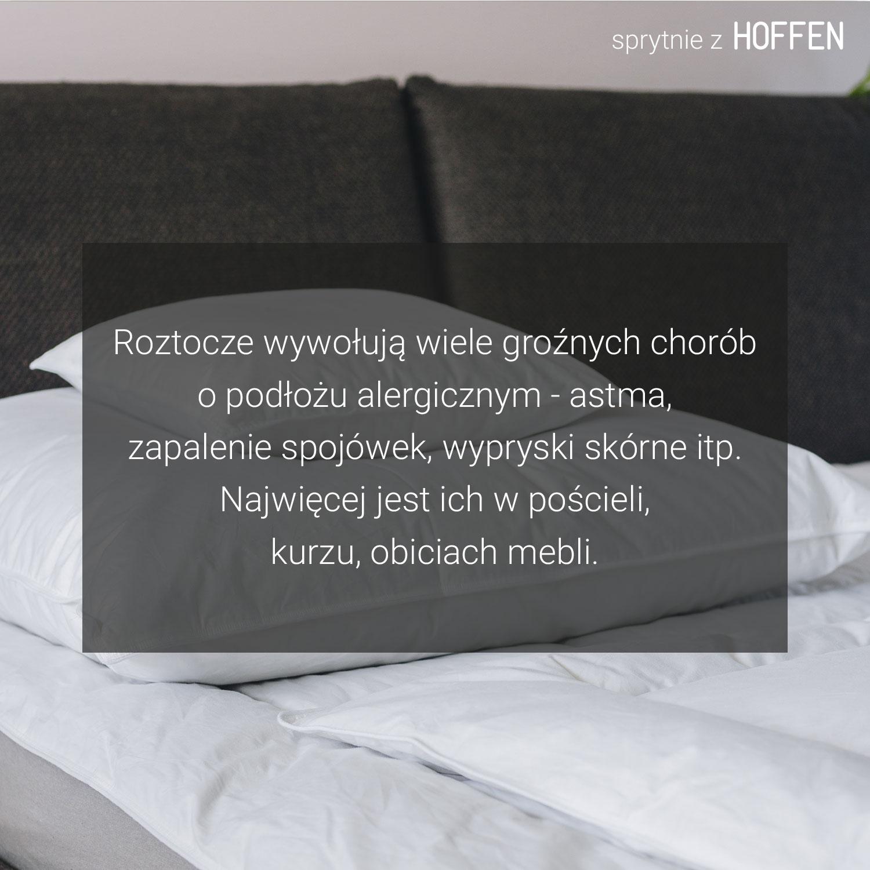 Sierp11
